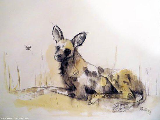 Amy Hemingway Art - Wild Dog