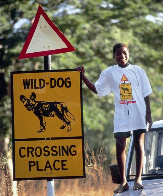 Wild Dog road sign